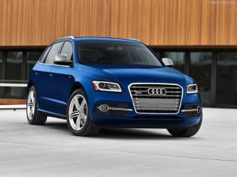 2014 Audi SQ5 foto